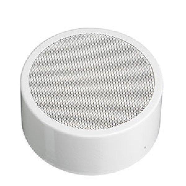 Boxa PA EN52-24 , rezistenta la foc, DLA10165T, IC Audio