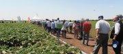 Agricost a integrat sistemul tour guide la evenimentul Ziua Câmpului